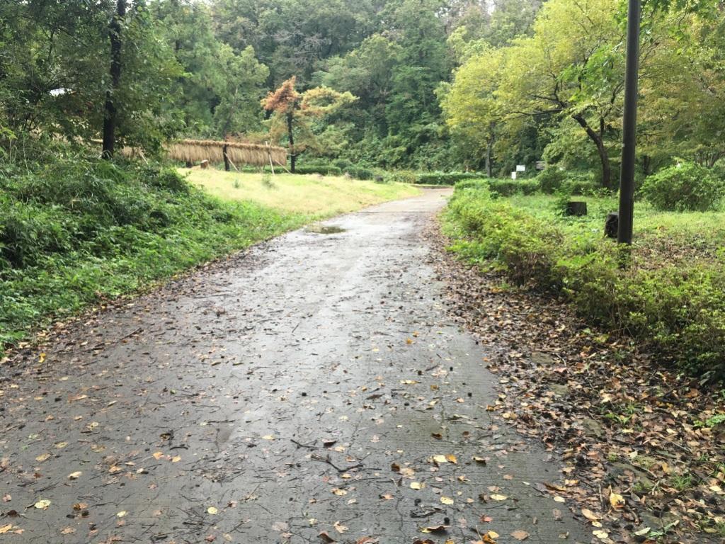 こども自然公園(大池公園)のランニングコース