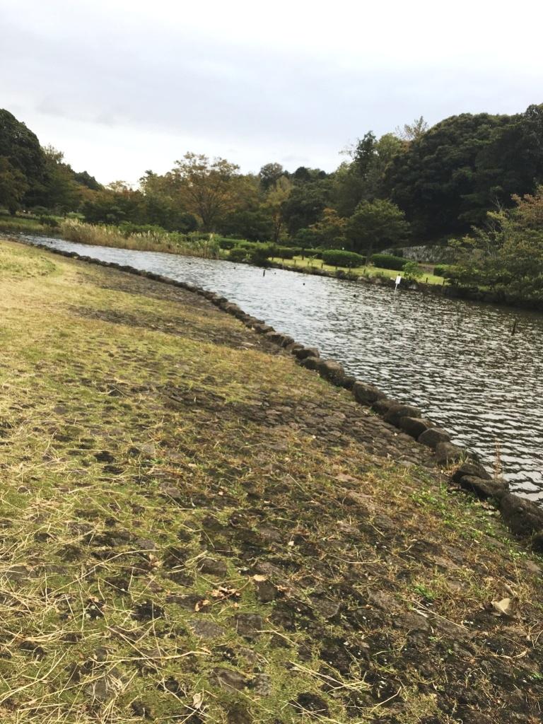 こども自然公園(大池公園)の池の釣り場