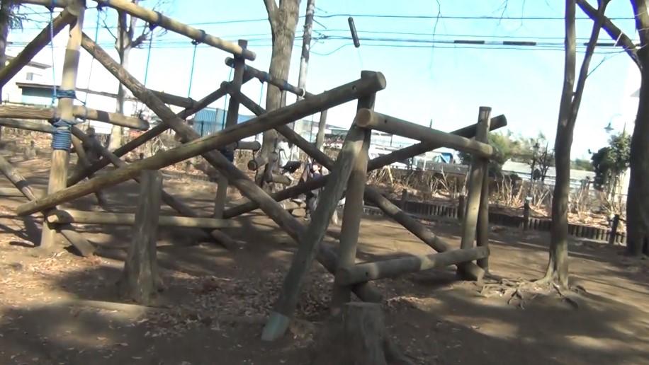 相模原麻溝公園のアスレチック