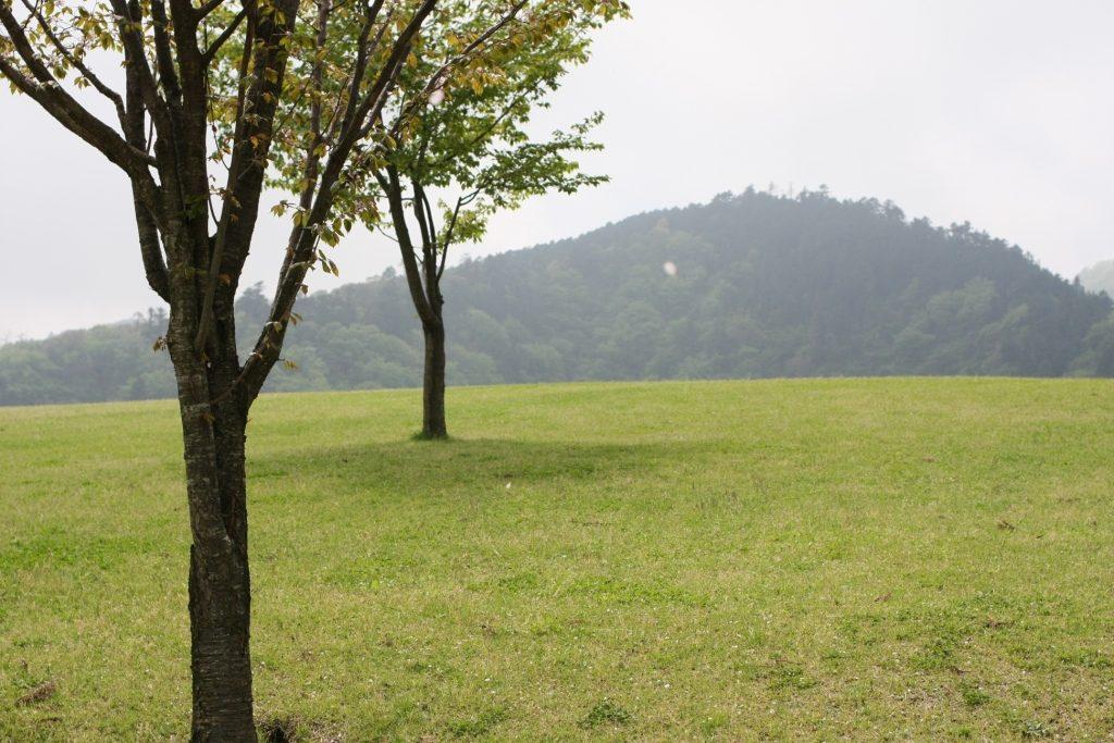 あいかわ公園の芝生広場から見える景色
