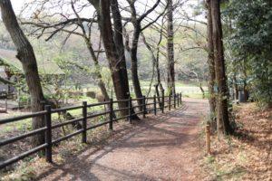 藤沢市少年の森アスレチックの入り口