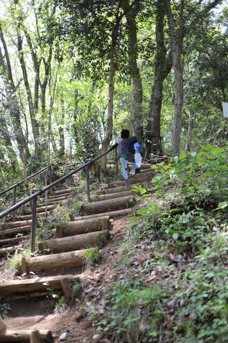 山の中の階段