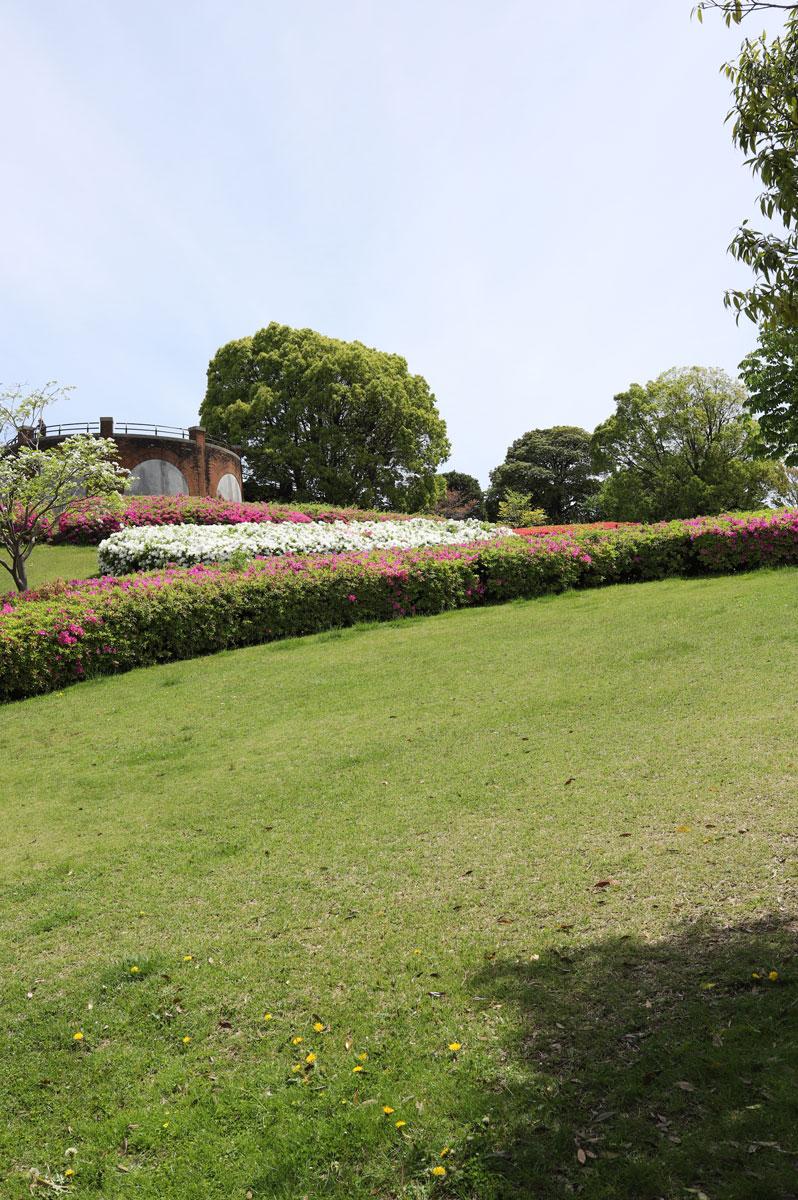 芝生広場と花