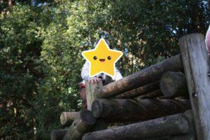 姫の沢公園のアスレチック