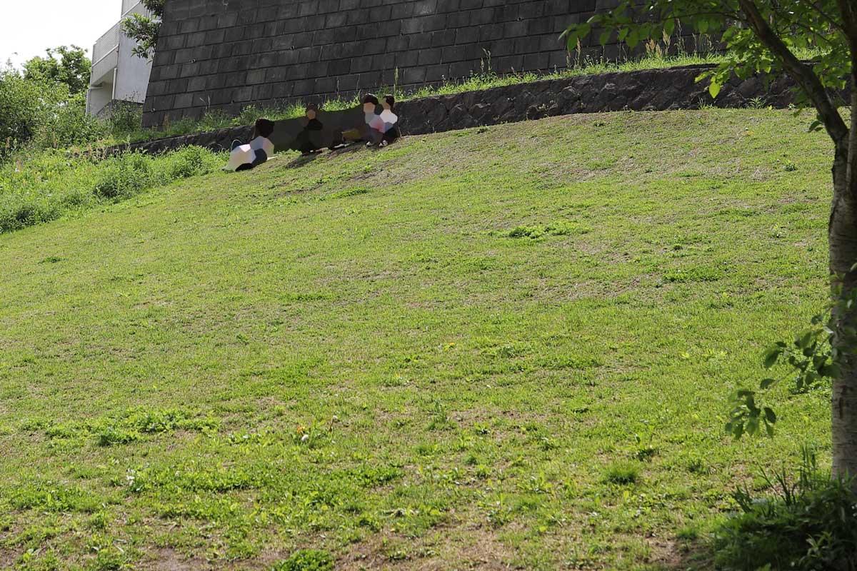 芝生の斜面