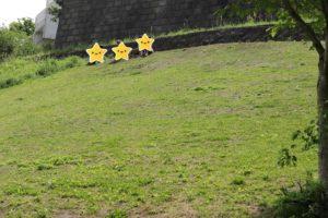 保土ヶ谷公園の芝生の斜面での遊び