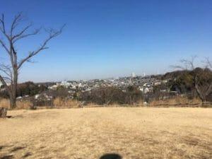 こども自然公園(大池公園)のきれいな青空と芝生の写真