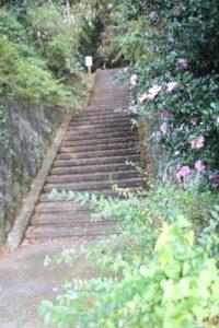 姫の沢公園のサザンカ駐車場からの入り口階段