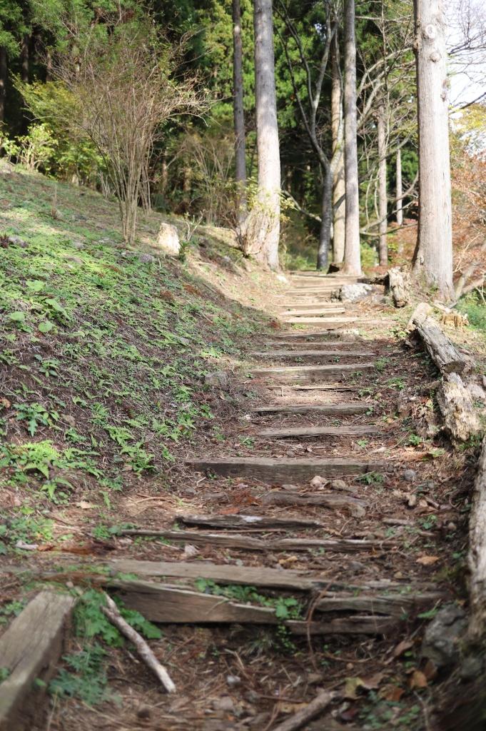 姫の沢公園の山の中の遊歩道