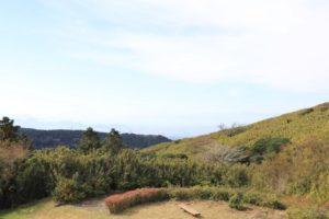 姫の沢公園のアスレチックからの景色
