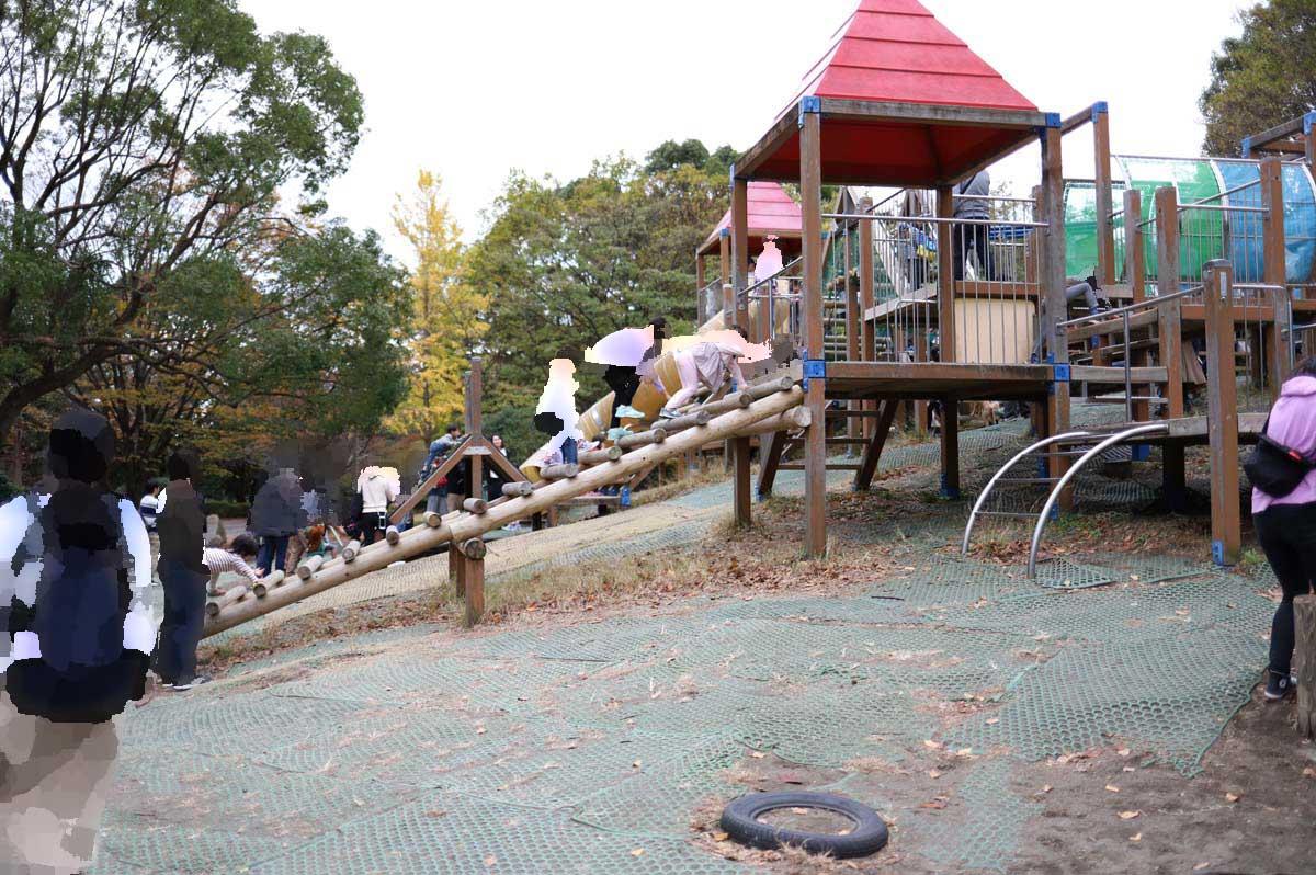 平塚市総合公園の複合遊具