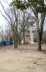 相模原公園の芝生広場の写真