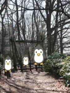 麻溝公園のアスレチックの写真