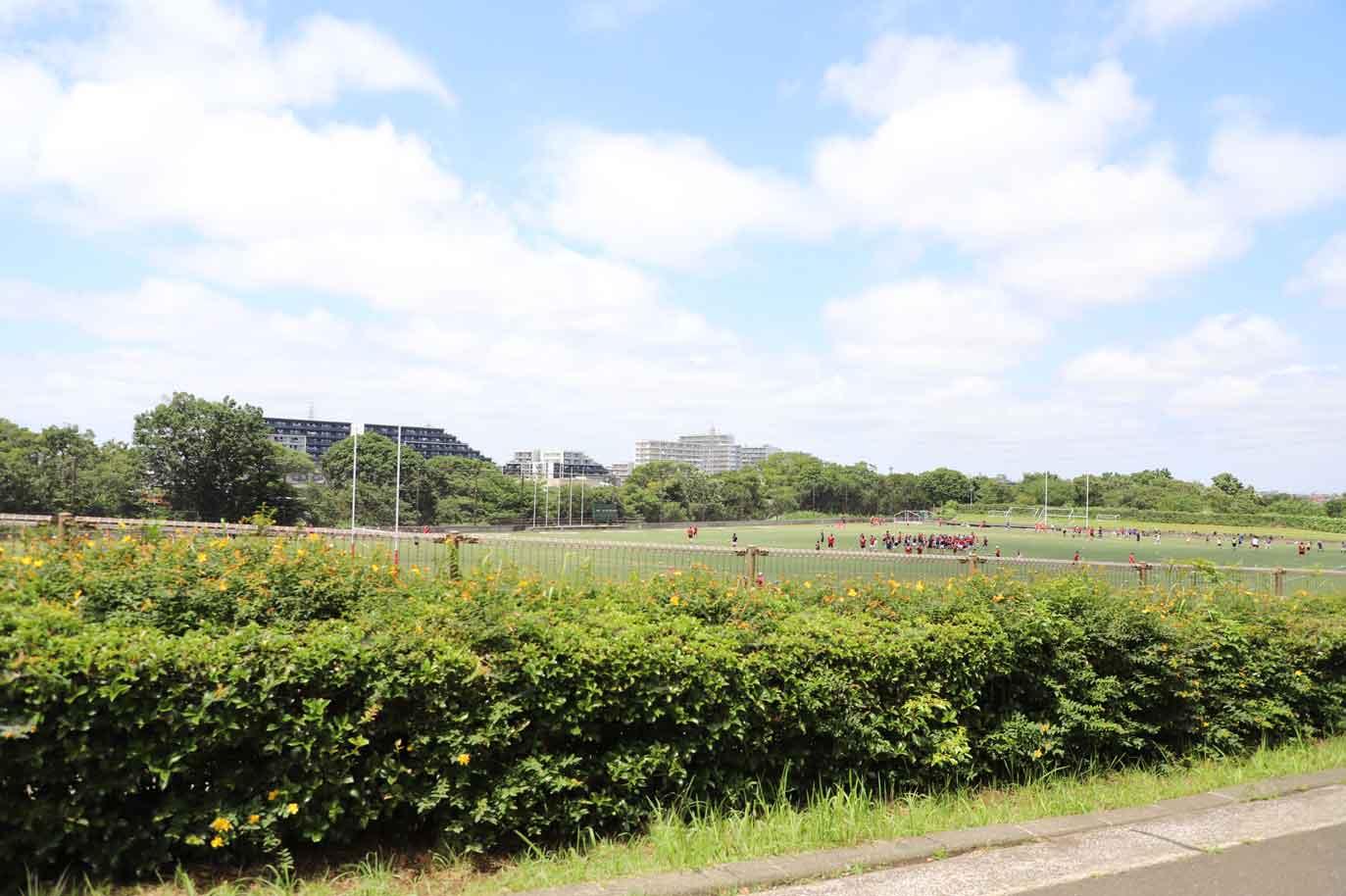保土ヶ谷公園のラグビー場