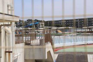 辻堂海浜公園のプール