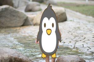 平塚市運動公園の水遊びができる小川