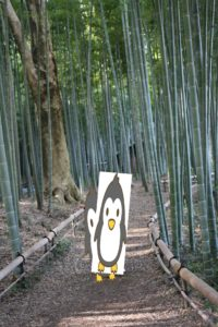 茅ヶ崎里山公園の竹林