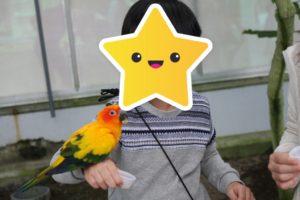 掛川花鳥園での鳥のエサやり