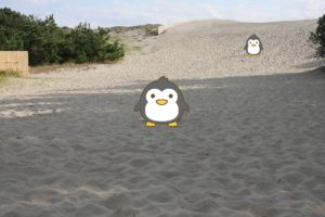 浜岡砂丘の砂浜