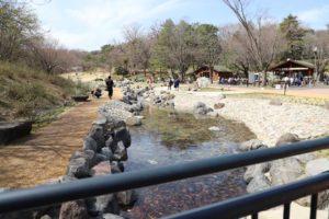 武蔵丘陵森林公園の西口にある水遊びができる渓流広場
