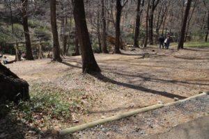 武蔵丘陵森林公園のアスレチック