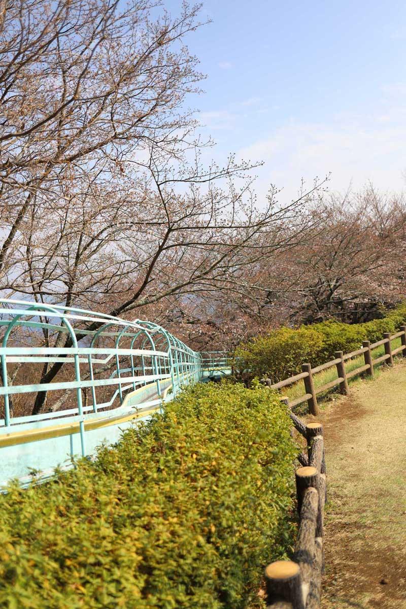 吾妻山公園のすべり台