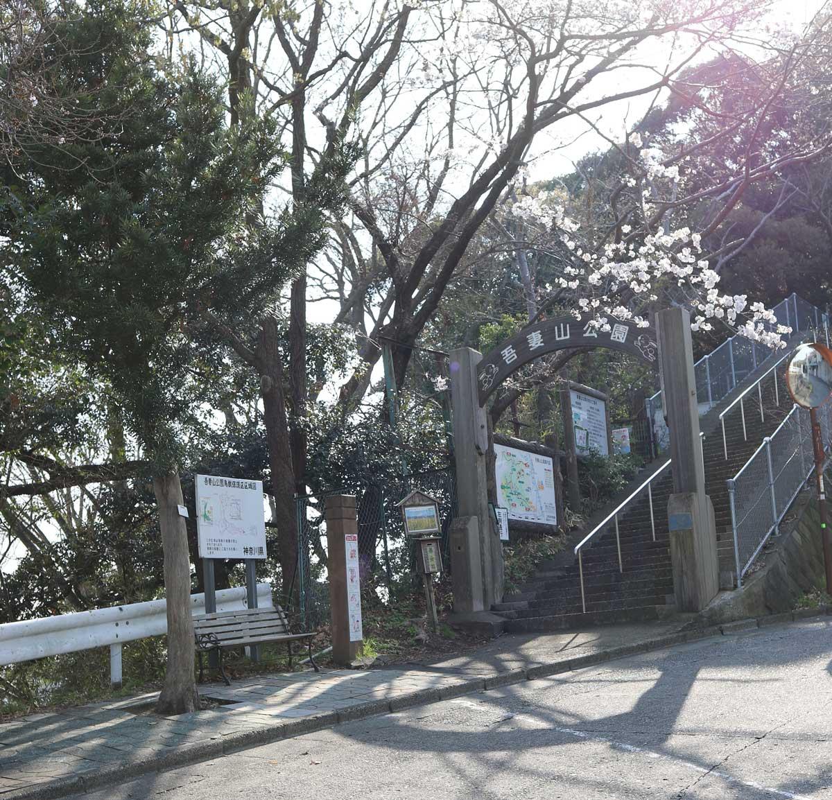 公園入口の階段