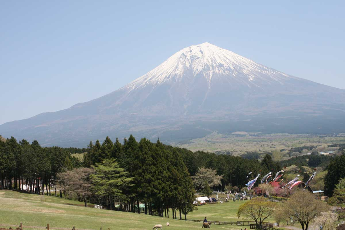 牧場の先に見える富士山の