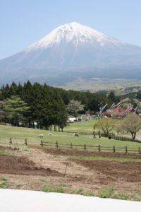 魔界の牧場からの富士山