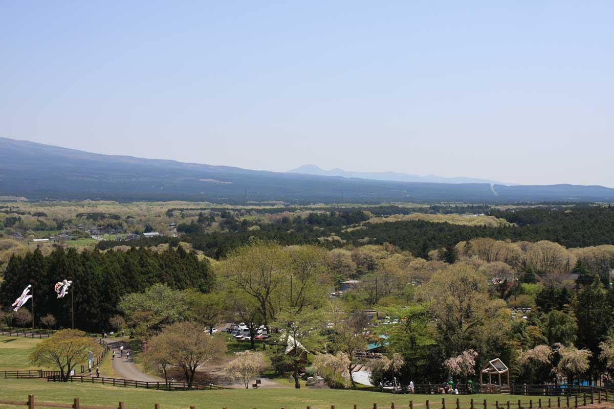 牧場の先に見える富士山の裾野