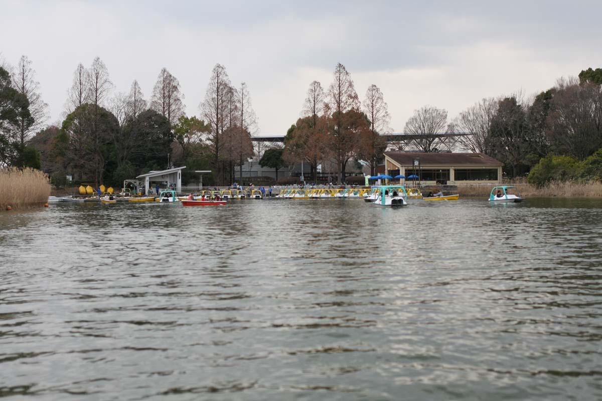 池のボート
