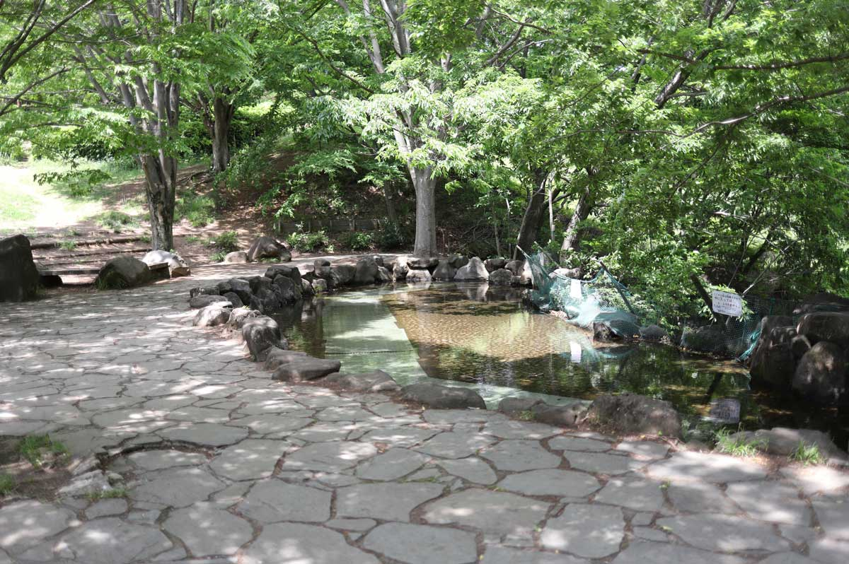 じゃぶじゃぶ池での水遊び