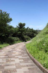 くりはま花の国の散歩道
