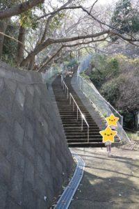 吾妻山公園の入り口