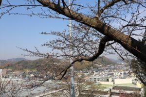 吾妻山公園から見える景色