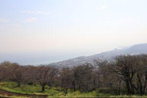 吾妻山公園の景色