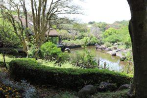 アニマルキングダムの園内風景
