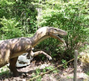 アニマルキングダムに展示している恐竜