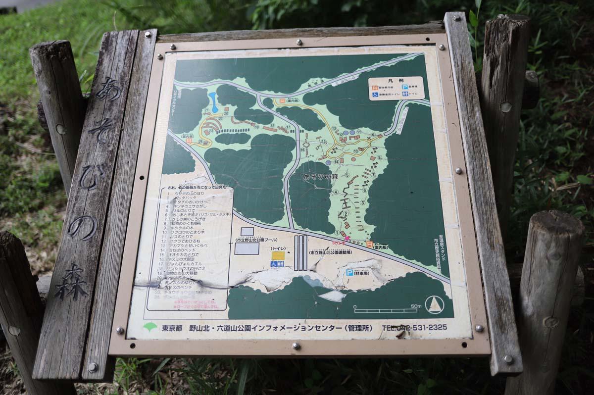 公園の全体マップ