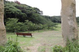 観音崎公園の芝生広場