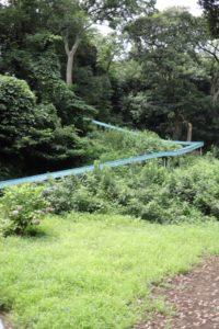 観音崎公園のアスレチックにある長いすべり台
