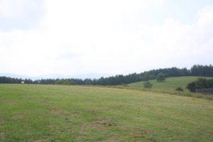 長門牧場の草原