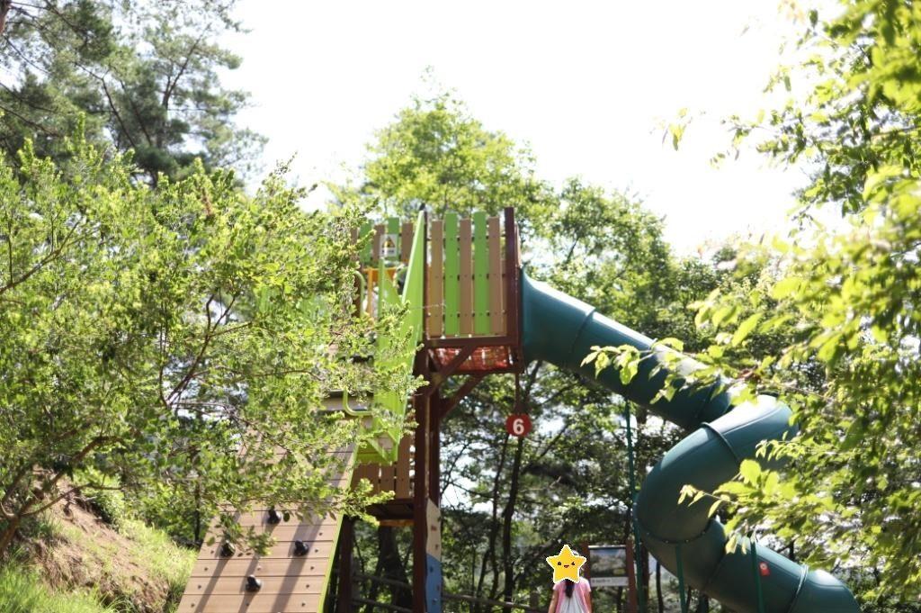 無料の公園