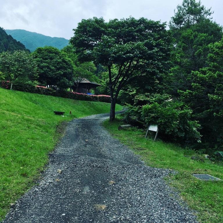 キャンプ場の遊歩道