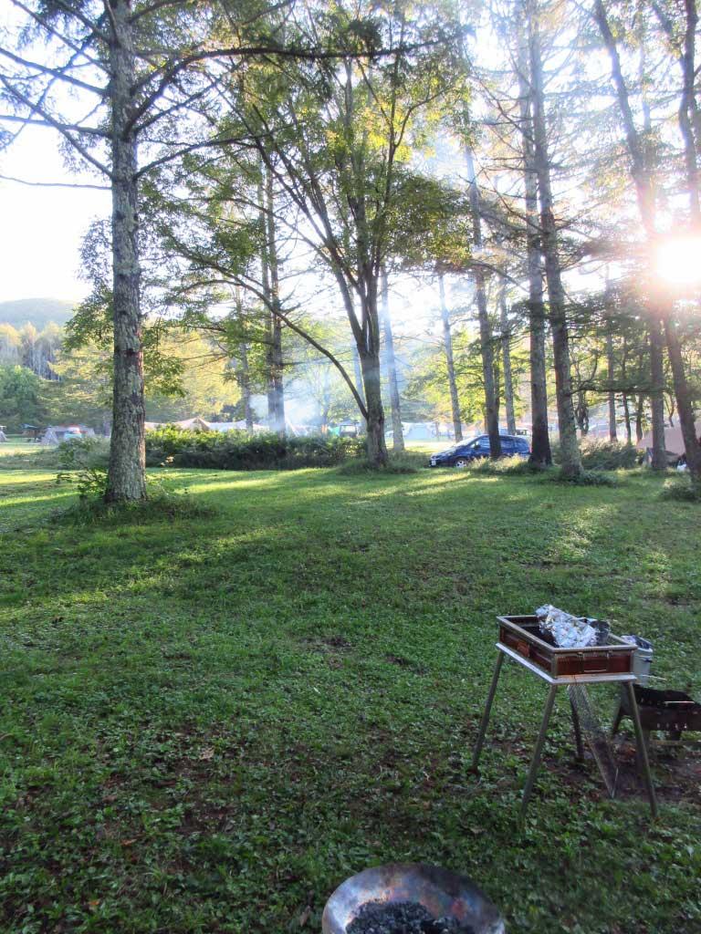 オートキャンプ場の林間エリア