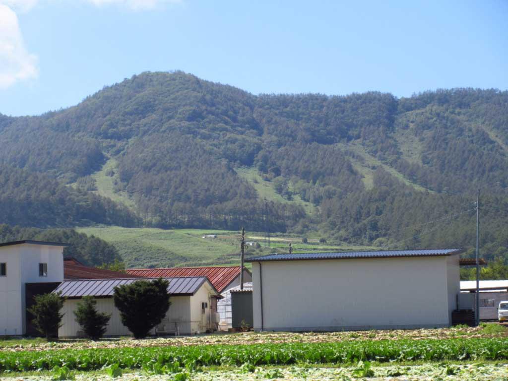 畑とその先に見える山