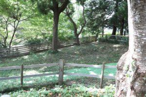 成田ゆめ牧場のドッグラン