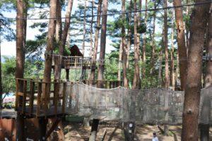 富士すばるランドのどんぐりランドにあるネットの吊り橋