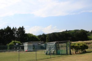 ドッグフィールド合衆国のドッグランと富士山