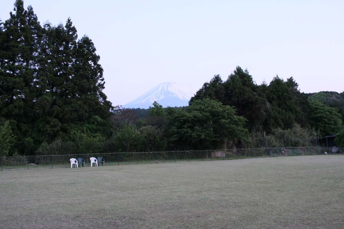 ドッグランとその先に見える富士山